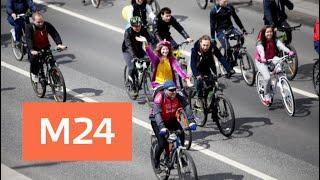 Смотреть видео По Садовому кольцу проехали десятки тысяч велосипедистов - Москва 24 онлайн