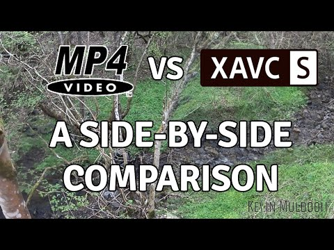 MP4 VS XAVC S - A Side-by-Side Comparison