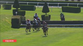 Vidéo de la course PMU PRIX GRAND EST