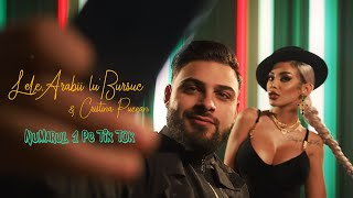 Lele, Arabii lu' Bursuc & Cristina Pucean - Numarul 1 pe Tik Tok  | Official Video ♫ HIT