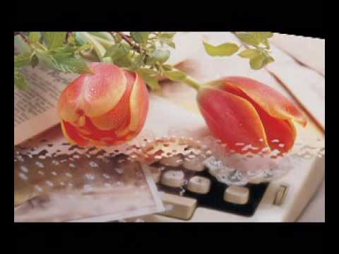 canh hoa ep trong tim