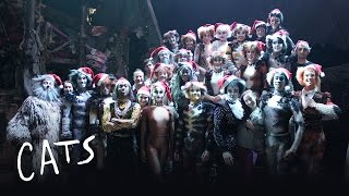 Merry Christmas from the cast of #CatsLondon | Cats the Musical