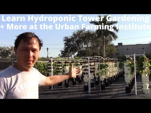 Learn Hydroponic Tower Gardening + More at The Urban Farming