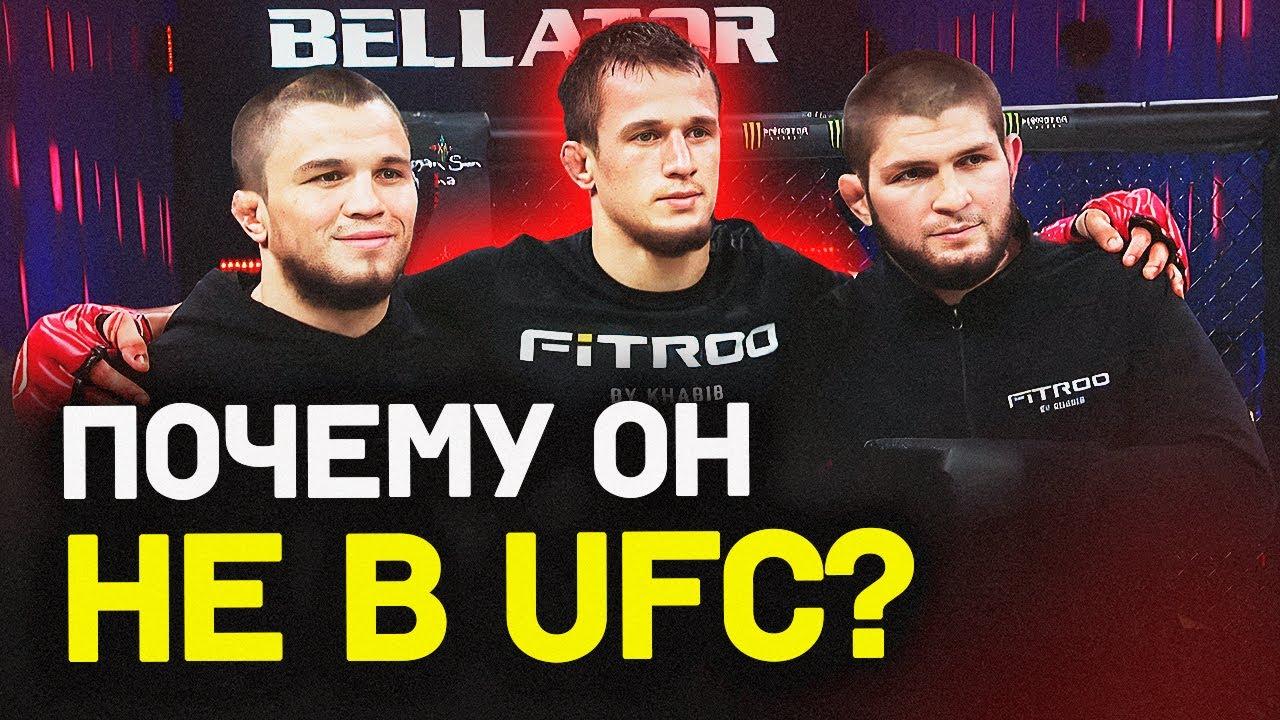Брат Хабиба разносит в Bellator – почему не в UFC / Как Чэндлер обогнал Махачева
