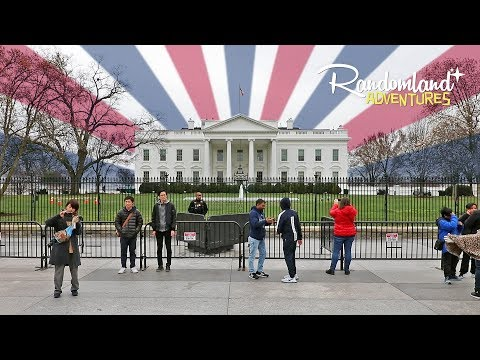 The White House and the Batmobile - Adventures in Washington DC!