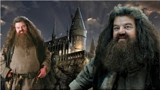 What If Hagrid Went Back To Hogwarts As A Student?