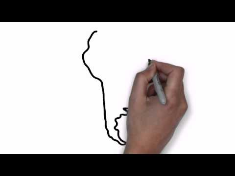 America Map Drawing.How To Draw Map Of South America Youtube