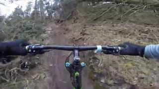 Cwmcarn Forest Drive Red MTB XC Trail - Cafall - Final Descents 04.15