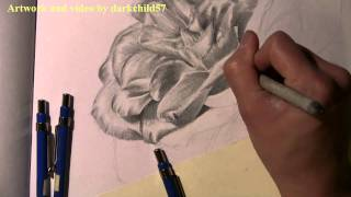 Drawing w/ DC57: Rose with leaves