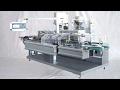 Horizontal cartoning machine blister boxing cartoner end packaging solution Equipo de embalaje