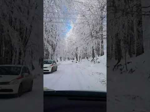 Winter Road in Tbilisi District