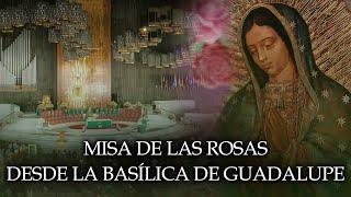 MISA DE LAS ROSAS a Nuestra Señora de Guadalupe desde Basílica de Guadalupe 12 DE DICIEMBRE DE 2020