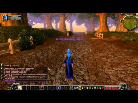 What It's REALLY Like To Be A World Of Warcraft Gamemaster.