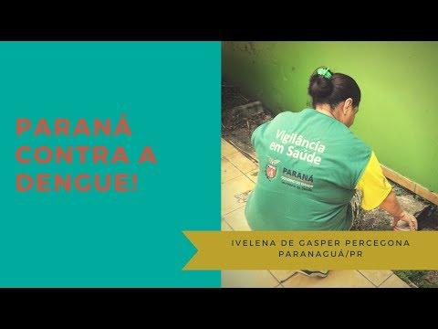 Reportagens das ações de combate a dengue realizadas em Paranaguá e Antonina no ano de 2016.