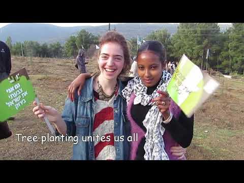 Tu Bishvat In Israel Hoping For A Greener Future