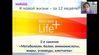 Бесплатная Онлайн Школа Здорового Питания   2е занятие