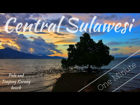 Central Sulawesi in a Minute