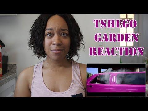 Tshego- Garden (Official Music Video) Reaction   GABBIreACTS