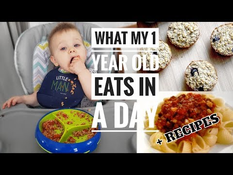 What My 1 Year Old Eats In A Day | Simple Toddler Recipes