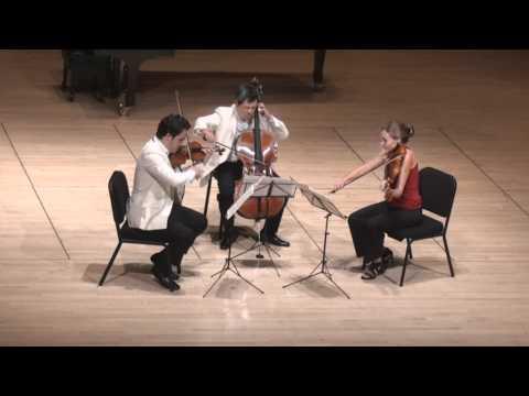Beethoven String Trio in C minor - 2nd mvt.   G. Schmidt, L. Francis, E. Kim