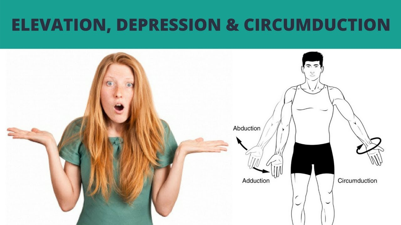 Elevation Depression And Circumduction Terminology 9 Youtube