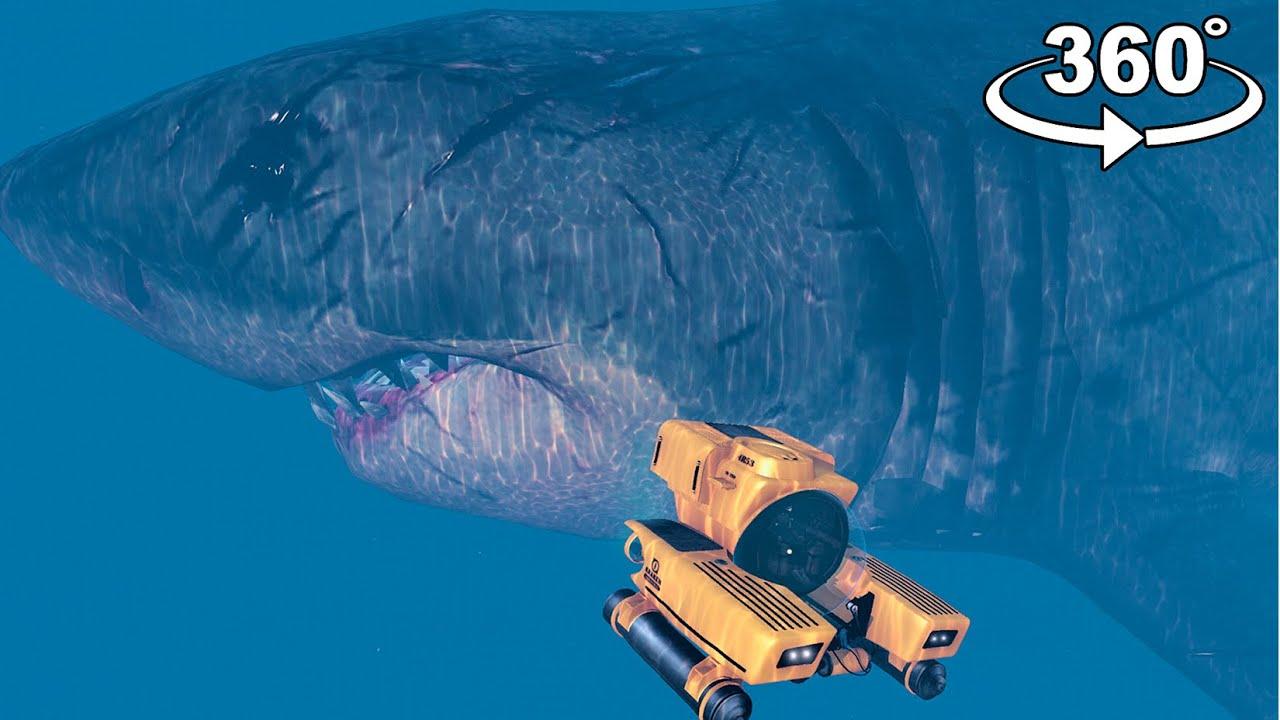 360° GTA 5 Megalodon Shark Attack in VR | GTA 5 360° VR Video
