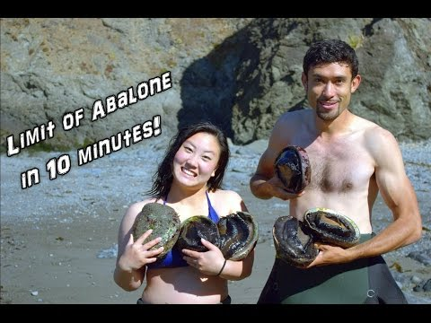How to Catch 9 Inch Abalone in 2 Feet of Water