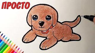 Как нарисовать МИЛОГО ЩЕНКА ЦЕЛИКОМ просто, Рисунки для детей и начинающих #drawings
