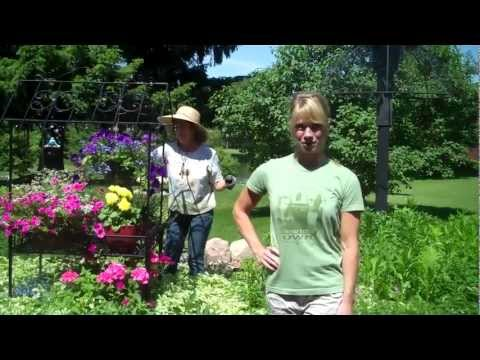 Garden for Health:  The Physical, Nutritional and Stress Management Benefits