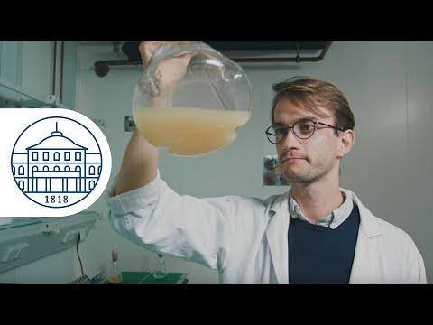 Food Biotechnology Master - Universität Hohenheim