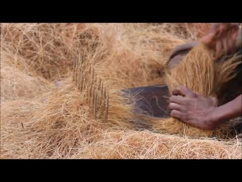What is Coco Peat?| Coco Peat Manufacturing | India | My Organic Farm
