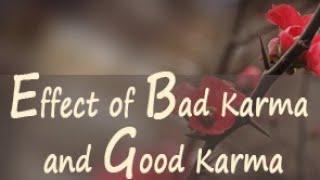 Effect of Bad Karma and Good Karma