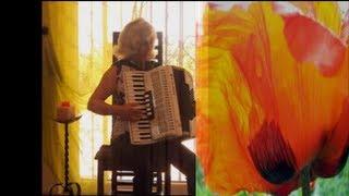 Roter Mohn - Tango - Akkordeon-Musik