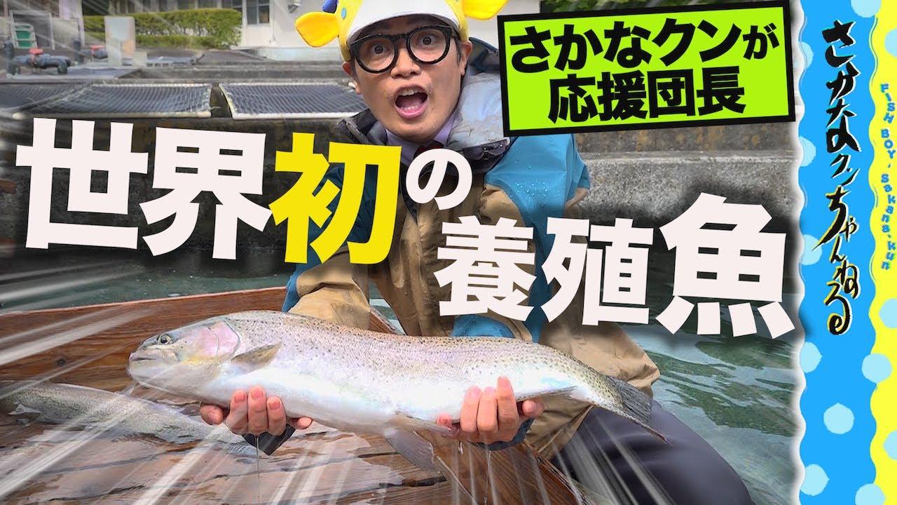 """""""世界初の養殖魚""""とは?【さかなクンが応援団長です】"""