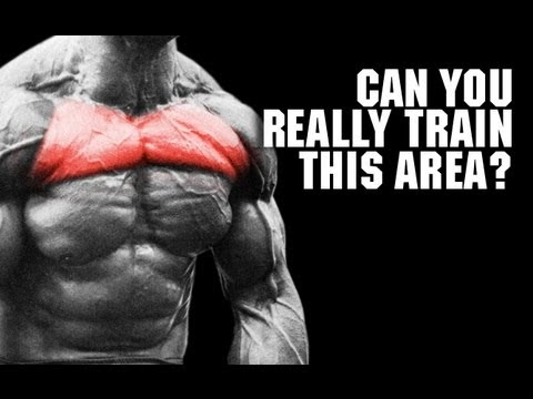 Target Your UPPER CHEST Pec Isolation Reality