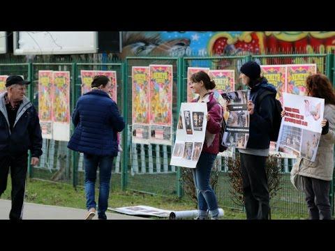 BOYCOTT CIRCUSES WITH ANIMALS | Vegan in Cluj-Napoca