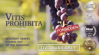 VITIS PROHIBITA - Resistant Grapes Coming out of the Shadows - ENGLISH TRAILER