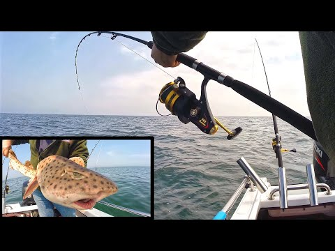 Fishing From A Boat & Tackle Shack Update