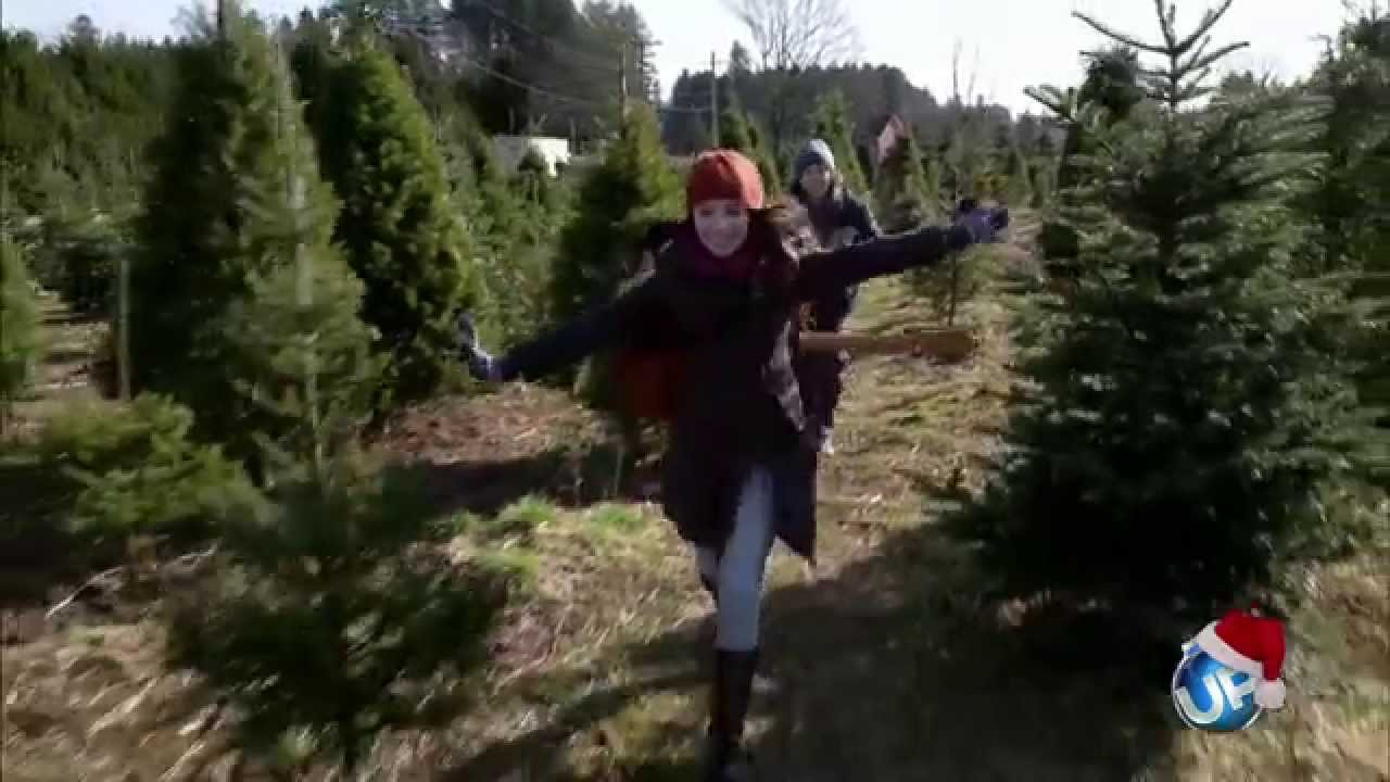 The Tree That Saved Christmas - YouTube