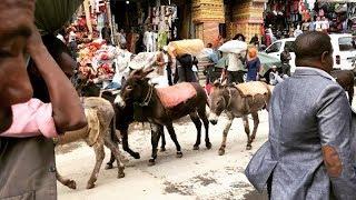 Exploring Addis Ababa Ethiopia