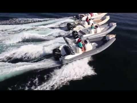 Black Fin - Boats
