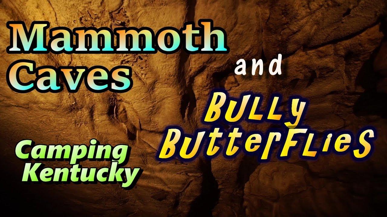 Mammoth Caves & Bully Butterflies : Camping Kentucky
