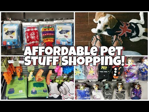 Where to go Shoping for cheap Pet Stuff in Manila