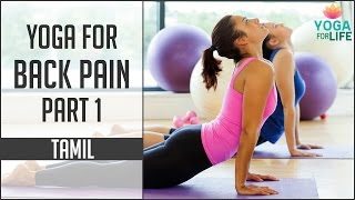 Yoga For Back Pain - Part 1 | Yoga Lessons in Tamil | Yoga For Life
