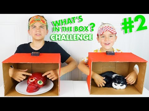 WHAT'S IN THE BOX CHALLENGE #2 ! - C'est quoi dans la boite ? - No VS Swan