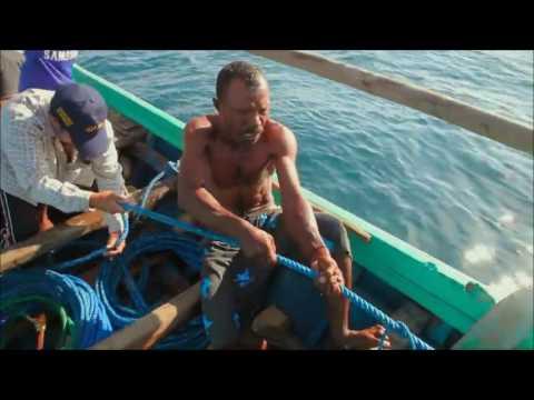 Racing Extinction - Endonezya, Lamakera, Manta Vatozu, Umut Olmak