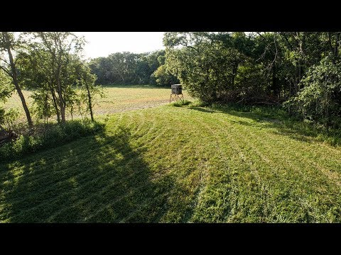 Hunting Farm Developed Strategically For The Trophy Deer Hunter (135 Acres In Cass County, IL)