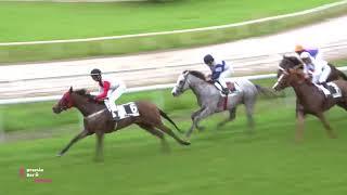Vidéo de la course PMU PREMIO BAR N