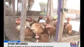 Avian Influenza - News Desk (28-5-5)