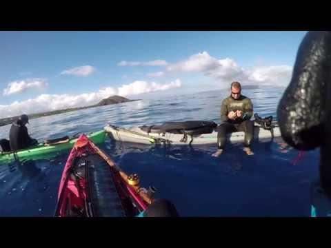 Maui Spearfishing